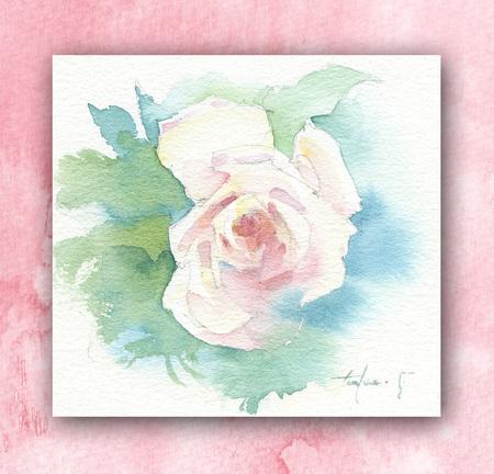 rose2takufuruyama.jpg