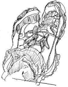 treckingshoes.jpg